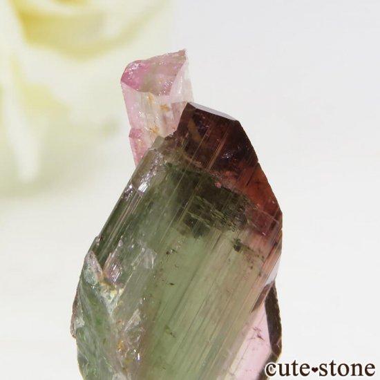 マダガスカル産 バイカラートルマリンの結晶 1.2gの写真2 cute stone