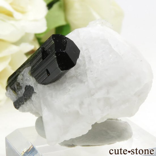 パキスタン スカルドゥ産 グリーントルマリンの母岩付き結晶(原石) 18gの写真2 cute stone