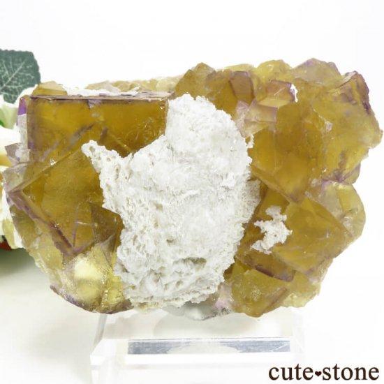 イリノイ州 Cave-in-Rock産 イエロー×パープルフローライト(蛍石)の原石 578g