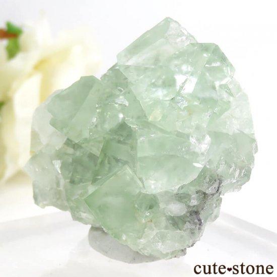 モンゴル産 グリーンフローライト&カルサイトの母岩付き結晶(原石) 62.1gの写真2 cute stone