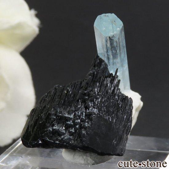 ナミビア エロンゴ産 アクアマリン&ショールの母岩付き結晶(原石)6.3gの写真2 cute stone