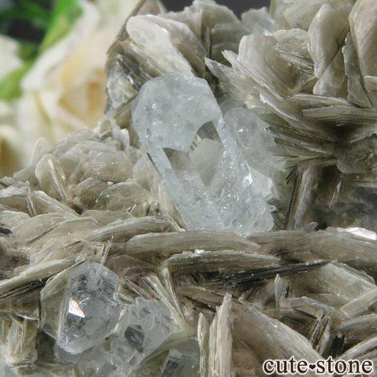 パキスタン産 アクアマリンの母岩付き結晶(原石) 206gの写真5 cute stone