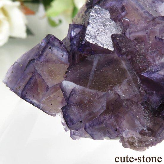 イリノイ州 Cave-in-Rock産 パープル×イエローフローライト(蛍石)の母岩付き結晶(原石) 57g の写真4 cute stone