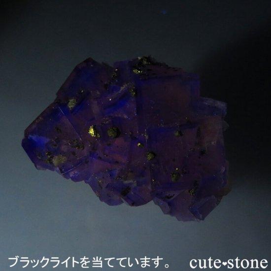 ドイツ Frohnau産 イエロー×パープル×ブルーフローライト&パイライト 25.3gの写真6 cute stone