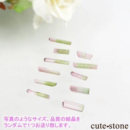 アフガニスタン Paprok産 バイカラートルマリンの結晶 Sサイズ 【ランダムで1つお届け】の写真0 cute stone