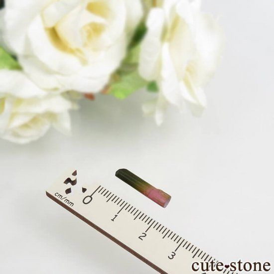 マダガスカル産 バイカラートルマリンの結晶 0.6gの写真3 cute stone