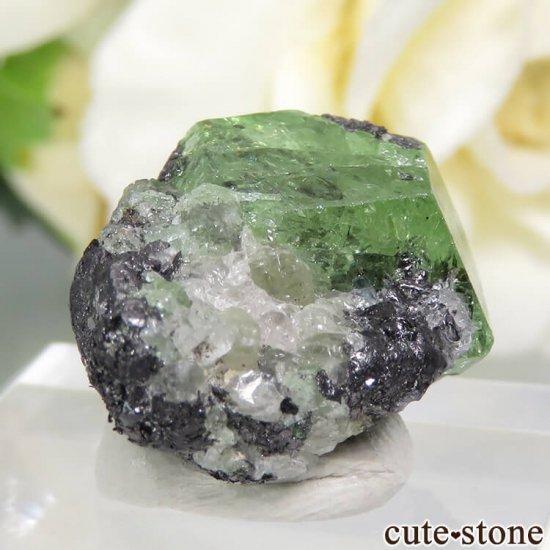 タンザニア産 ツァボライトの結晶(原石) 23.4ctの写真1 cute stone