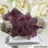 アメリカ ニューメキシコ州 Surprise Mine産 パープル×グリーンフローライトの結晶(原石) 11.7gの画像