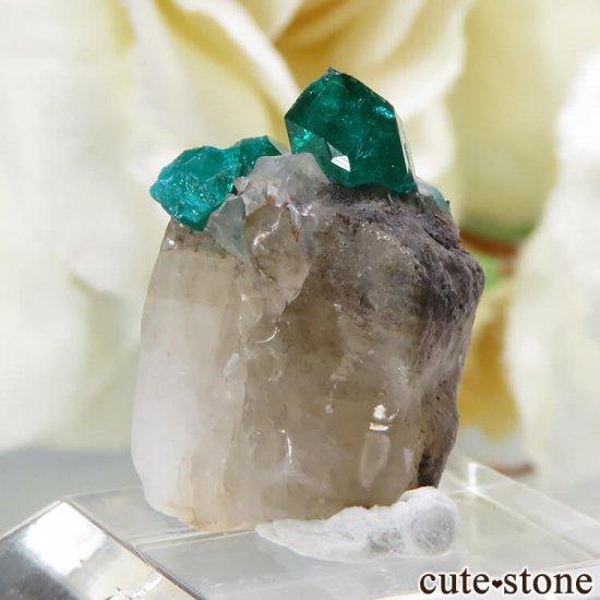 カザフスタン産のダイオプテーズの母岩付き結晶(原石)1.2gの写真0 cute stone