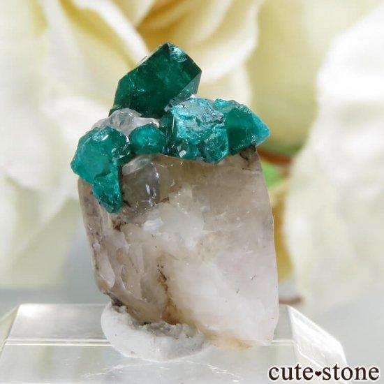 カザフスタン産のダイオプテーズの母岩付き結晶(原石)1.2gの写真1 cute stone