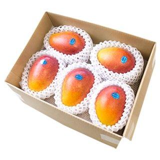 奄美大島産 完熟マンゴー | ご家庭用お値打ち品 1kg~
