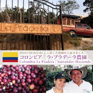 コロンビア  ラ・プラデーラ農園 (200g)