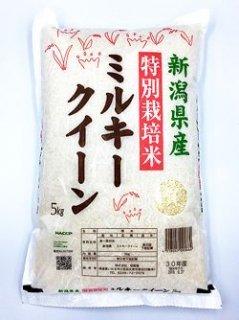 新潟県産 特別栽培米ミルキークイーン