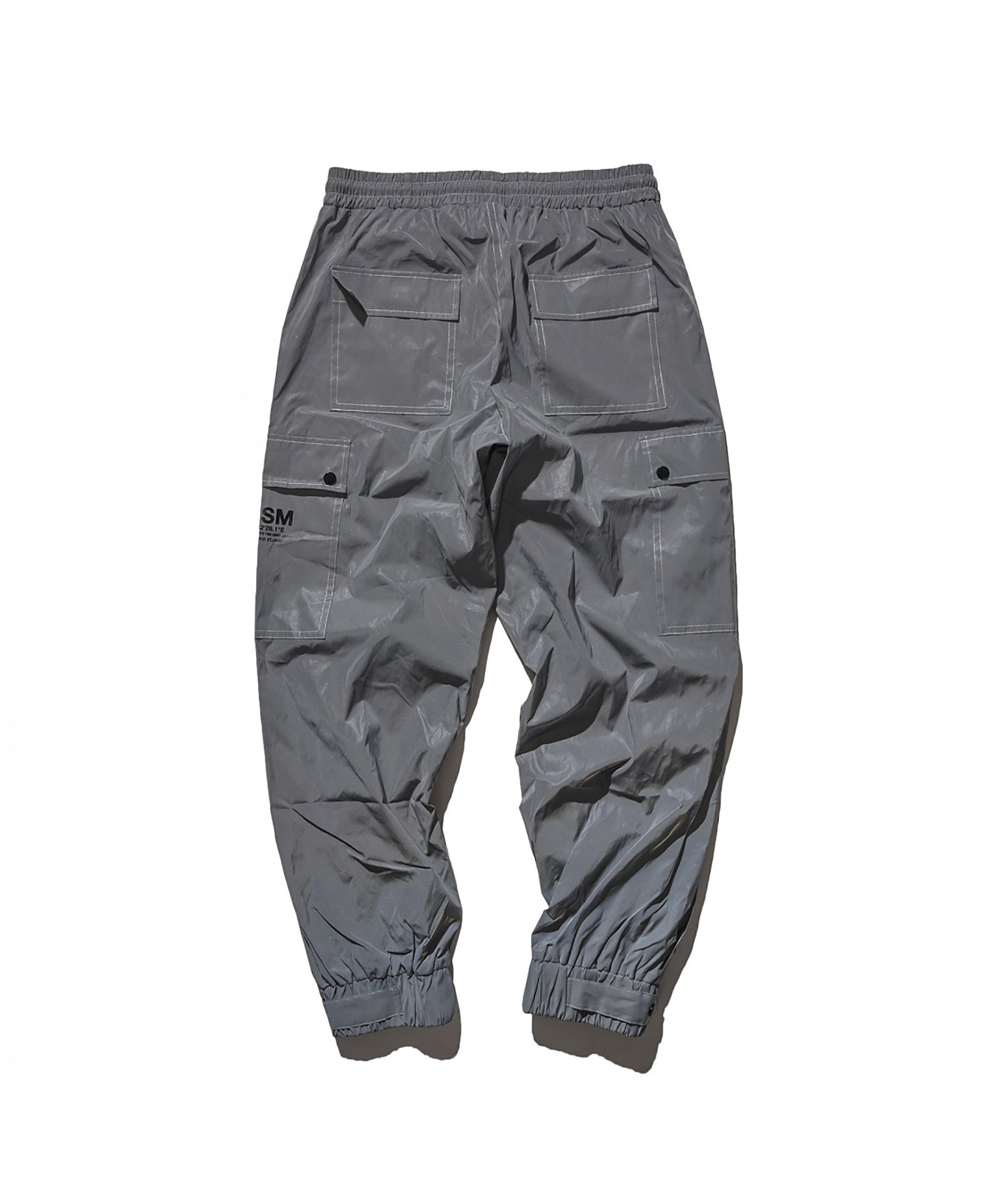DUALISM BUTTON REFLECT CARGO PANTS (SILVER)