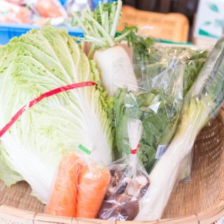 【お野菜約7種類】冬のとれたて野菜お鍋セット
