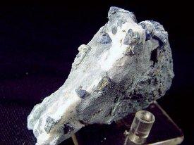 ベニト石、海王石 : Benitoite, Neptunite