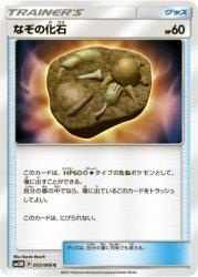 SM5M-055 C なぞの化石