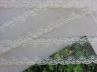 LR02003 綿レース 3cm巾