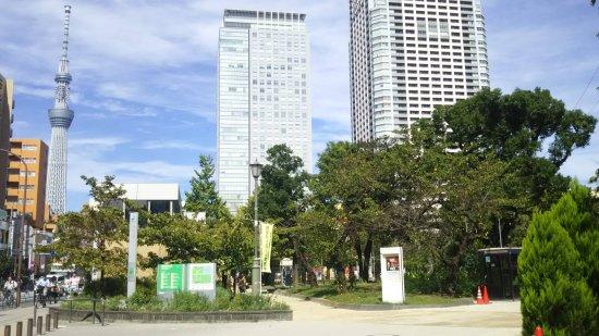 錦糸公園−ガラスコーティング
