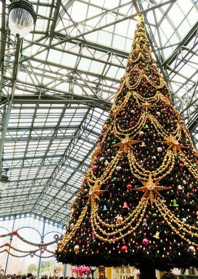 ディズニーランドクリスマスーコーティング専門店