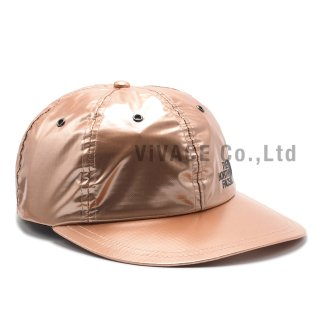 Supreme?/The North Face? Metallic 6-Panel