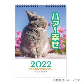 2019 壁かけA3ハンガーカレンダー(通常配送)