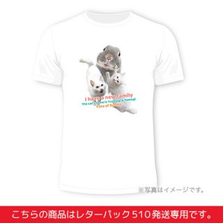 new family Tシャツ白(レターパック510・予約販売)<img class='new_mark_img2' src='https://img.shop-pro.jp/img/new/icons15.gif' style='border:none;display:inline;margin:0px;padding:0px;width:auto;' />