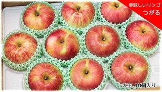おいしいりんご 「つがる」 大玉 10個セット