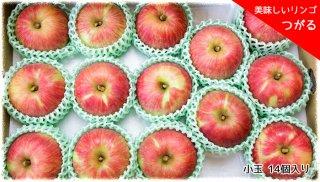 おいしいりんご 「つがる」 小玉 14個セット
