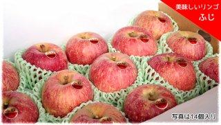 美味しいりんご 「ふじ」 小玉 14個セット