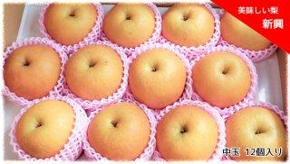 美味しい梨 「新興」(しんこう) 中玉 12個セット