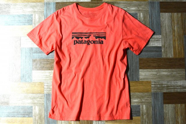 <img class='new_mark_img1' src='https://img.shop-pro.jp/img/new/icons7.gif' style='border:none;display:inline;margin:0px;padding:0px;width:auto;' />patagonia ロゴ Tシャツ ピンク系 (メンズ古着)