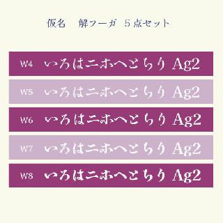 仮名 解フーガ Set