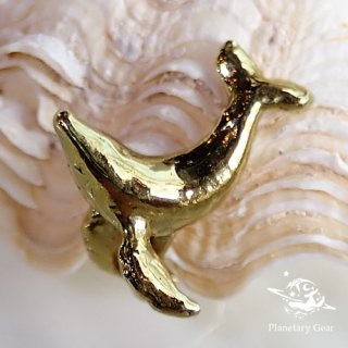 【 Planetary Gear 】『 pict 』/ ザトウクジラ / Earring