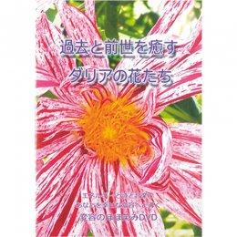 過去と前世を癒す ダリアの花たち