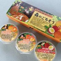 森のごちそう 屋久島産3種の果汁ゼリー