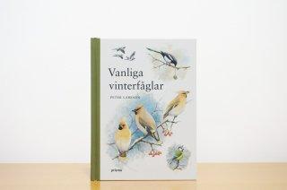Vanliga vinterfåglar