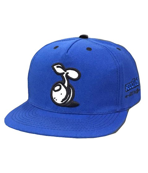 silver sprout snap back ~25th Anniversary ~の商品イメージ