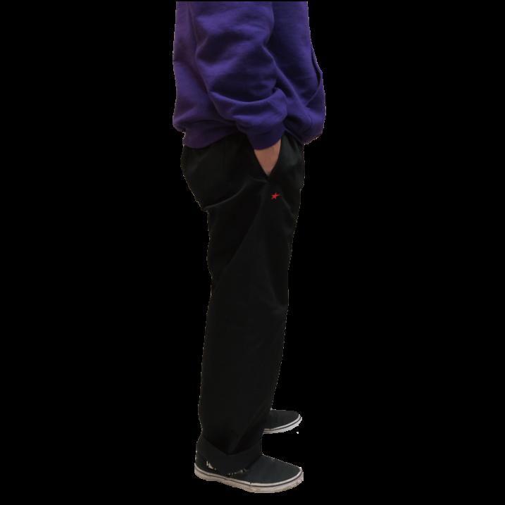 rg TC wide pants