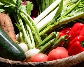 自然栽培野菜を中心とした命の力ある旬のおまかせ野菜セット