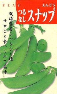 スナップエンドウの種【つるなしスナップ】〔固定種〕