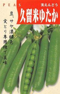 実エンドウの種【久留米ゆたか】〔固定種〕