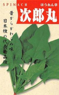 ホウレンソウの種【次郎丸】〔固定種〕 ※無消毒