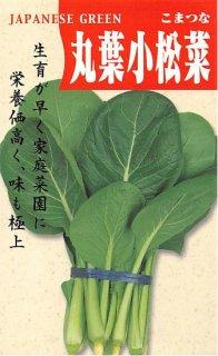 コマツナの種【丸葉小松菜】〔固定種〕 ※無消毒