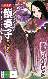 紫ハクサイ【紫奏子】