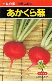 赤カブ【あかくらカブ】〔F1〕 ※無消毒