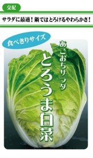 ミニハクサイの種【とろうま白菜】〔F1〕 ※無消毒