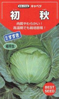 キャベツの種【初秋】〔F1〕