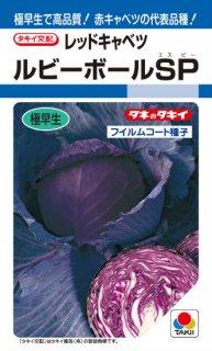 赤キャベツの種【ルビーボールSP】〔F1〕 ※無消毒
