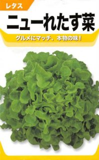 リーフレタス【ニューれたす菜】〔固定種〕 ※無消毒